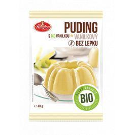 BIO puding bez lepku vanilkový Amylon 40 g