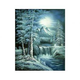 Obraz - Krása zimy
