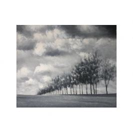 Obraz - Stromořadí