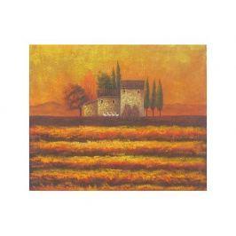 Obraz - Domek v západu slunce