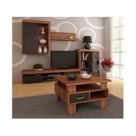 Konferenční stolek GAMMA, barva: švestka wallis/černý lesk
