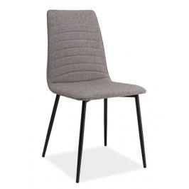 Jídelní čalouněná židle TOMAS, šedá