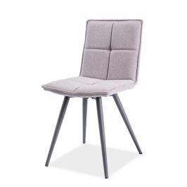 Jídelní čalouněná židle DARIO, šedá