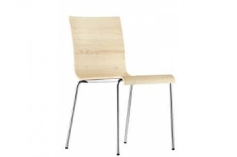 Židle Kuadra XL 2413 (Javor)  Kuadra XL 2413 Pedrali Pokoj a jídelna - Jídelní židle