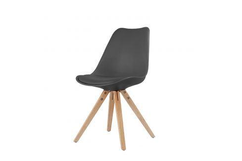 Jídelní židle LADY černá Pokoj a jídelna - Jídelní židle