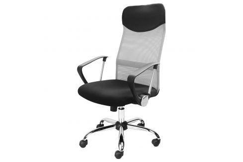 Kancelářské křeslo PRESIDENT stříbrné Pracovna - Kancelářské židle