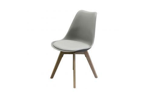 Jídelní židle QUATRO šedá Pokoj a jídelna - Jídelní židle